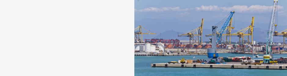 L'export pisano supera la pandemia
