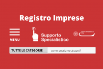 Nuovo servizio di assistenza on line Registro Imprese - SARI